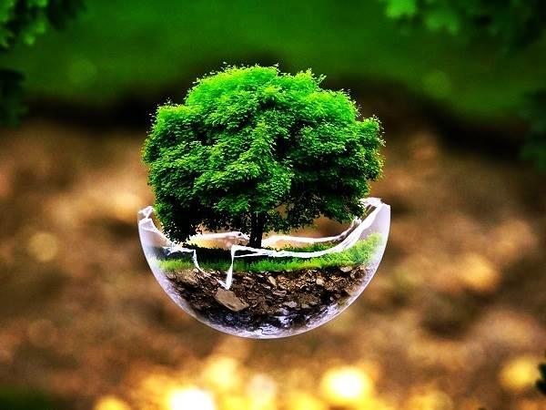 save earth good